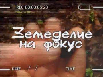 Земеделие на фокус_ Търсачи на трюфели, автор_ Анета Божидарова.mp4_snapshot_00.08.500