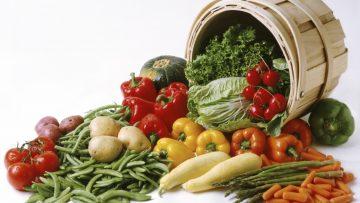 2237355basket-of-vegetables