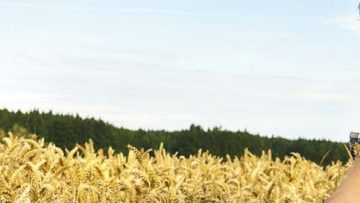 34834410young-farmer-with-crop-c-shutterstock-1