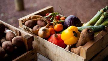 44111352farm-food-basket.838x0_q80