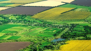 45160931ROMANIAN_AGRICULTURE_field_top_view_97763866_03_2