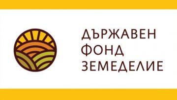 45404521DFZ-logo-1200×675-730×411