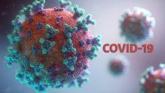 47358982200319153424koronavirus-covid19