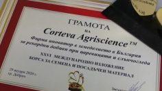 53286815cortewa