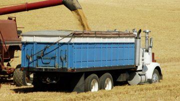 53950669Grain-Trucks