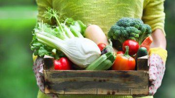 57757318woman-holding-basket-of-farm-food.653x0_q80_crop-smart