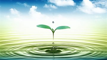 58550349water-drop_web