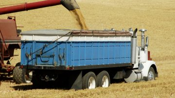 6267731Grain-Trucks