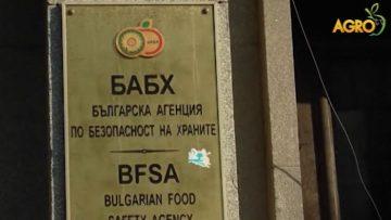 72383883BABH_foods
