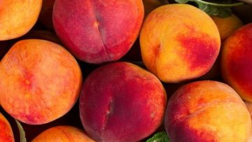fresh-organic-peaches-in-wooden-crate-viewed-from-royalty-free-image-584718022-1558541036