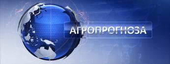 2304707608-agroprognoza