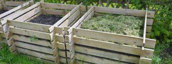 compost in the garden