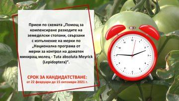 ZEMEDELSKI BUDILNIK____Domati____HD_DI.mpg_snapshot_00.19.734