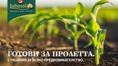 лебозол царевица и слънчоглед