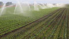 поливно земеделие агротв
