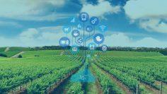 iot-1_a1_агро тв интелигентно земеделие