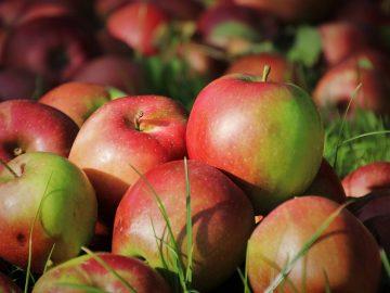 apples-5640909_960_720