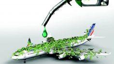 самолет биогориво