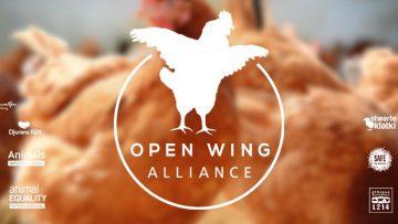Open Wing Alliance00