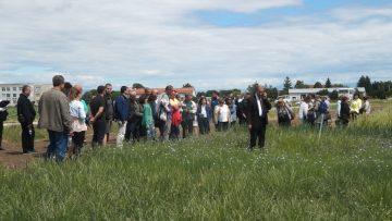 ден на фермера Садово