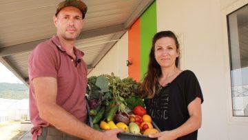 версол зеленчуци