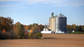 Tall silos in the farm during harvest time