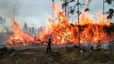 русия пожари