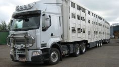 1280px-Renault_animal_transport_truck