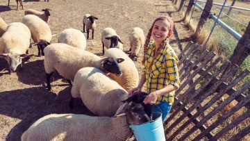 Famer woman with her flock of sheep