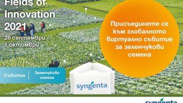 Subitie Fields of Innovation_2021