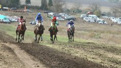 коне състезание Момчилово