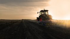 Tractor is preparing the land at dusk
