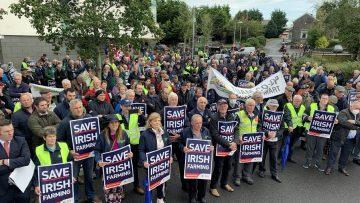 протести ирландия
