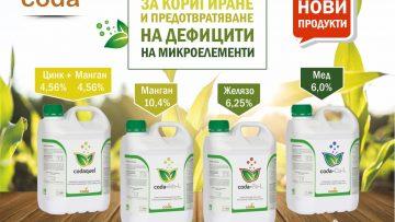 Coda new products Fall 2021