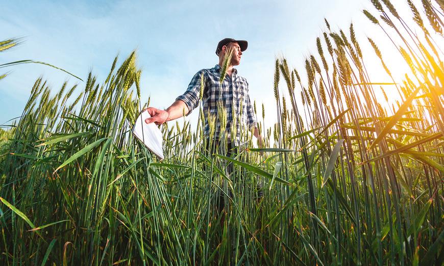 Без такса при кандидатстване за земеделски кредити от ОББ