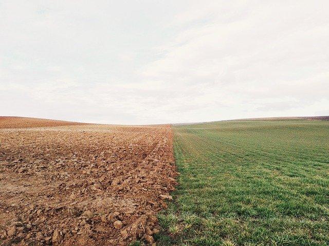 Проф. Георгиев: Глобалните климатични предизвикателства извикват решения в световен план